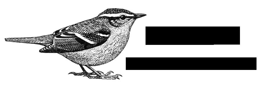 http://www.utsirafuglestasjon.no/images/ufs_logo.png